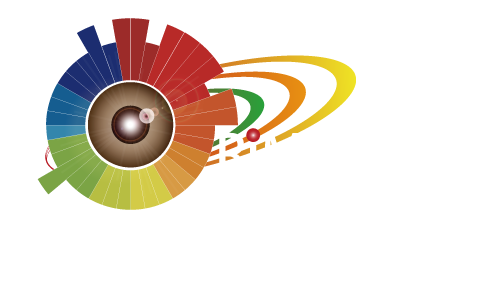 RiMM_logo